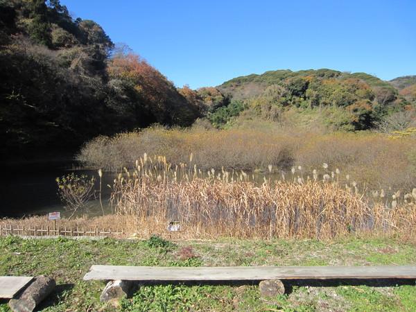 【平成29年度のイベント告知】沢山池の里山で開催予定のイベント!
