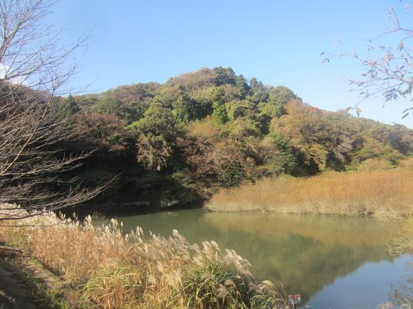 【参加者募集】令和2年度 自然観察会「沢山池の里山 春の自然観察会」